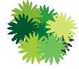 Зелёный куст