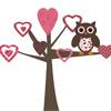 Совёнок на дереве любви