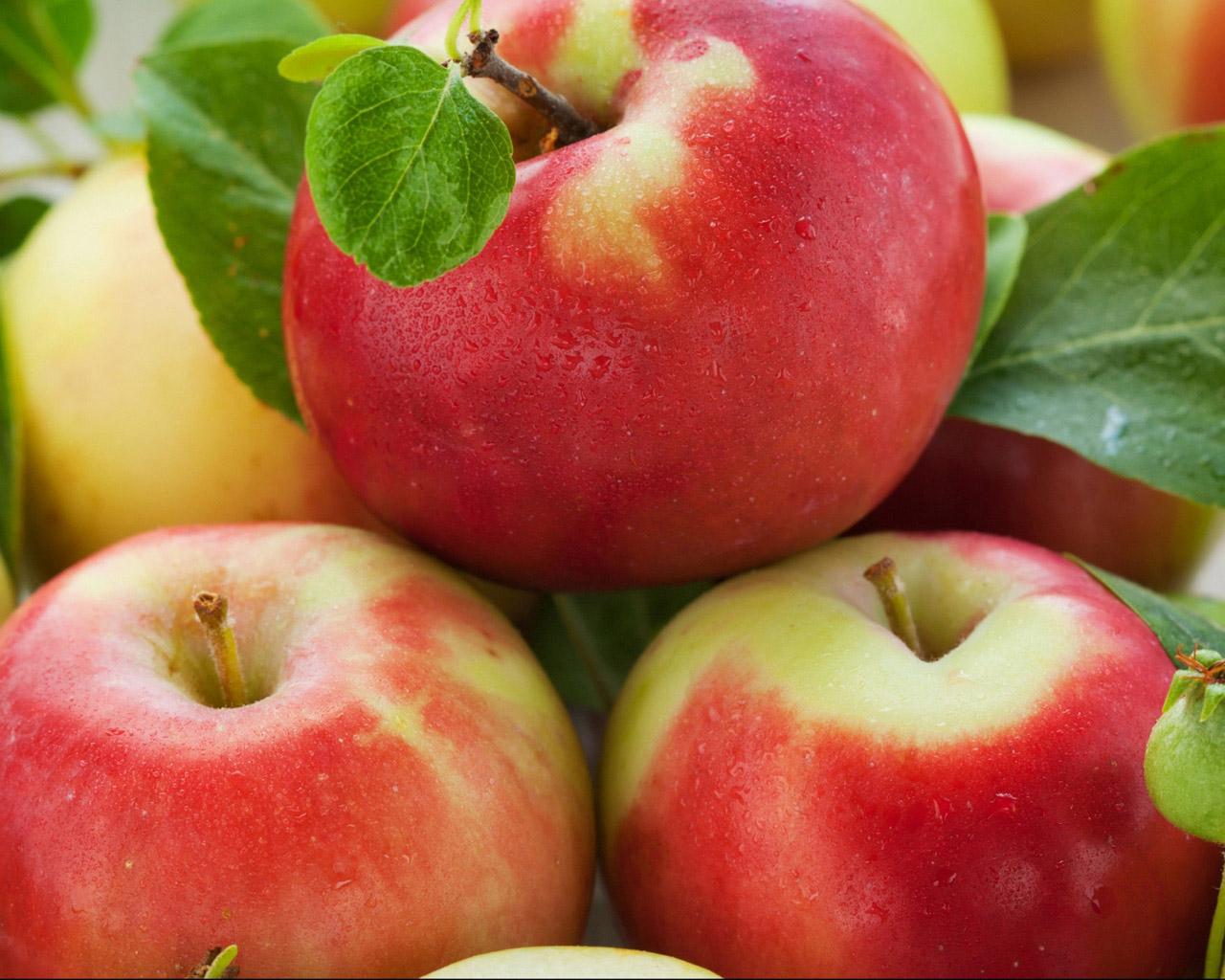 Созревшие яблоки с листьями открыть в