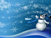 Снежная вьюга